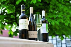 Fantastische Weissweine aus Rueda der Bodega José Pariente